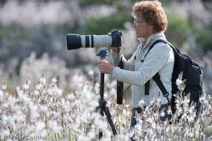 Kontakt Fotoreise oder Fotoworkshop