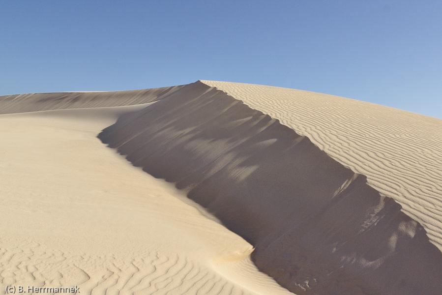 Teilnehmerbild von der Fotoreise nach Fuerteventura