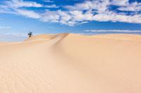 Beispielbilder zur Fotoreise nach Fuerteventura in Spanien