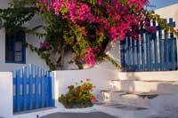 Beispielbilder zur Fotoreise Makro auf Santorini
