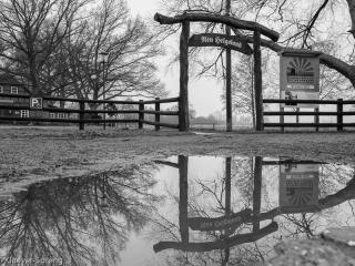 Beispielbild zur Fotoreise Schwarzweissfotografie im Teufelsmoor