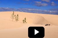 Fotoreise Videos - Spanien Fuerteventura