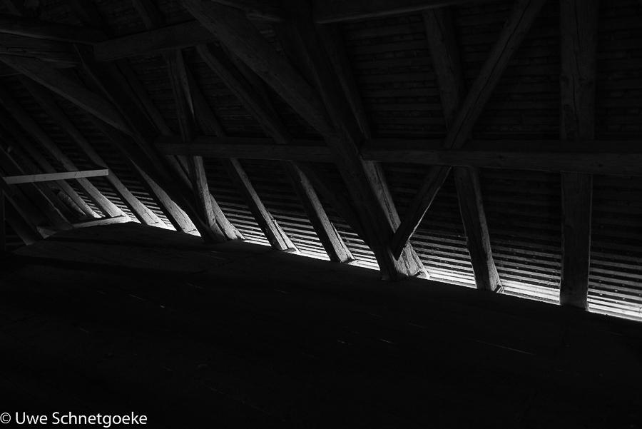 Teilnehmerbild vom Fotoworkshop Konstanz