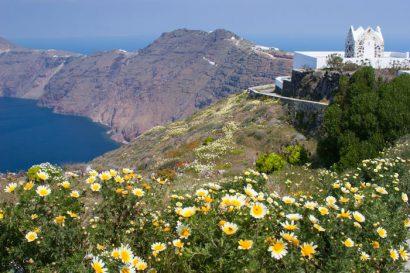 Fotoreise Makrofotografie auf Santorini