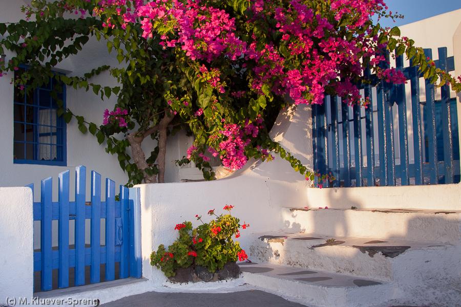 Beispielbild zur Fotoreise Makro auf Santorini