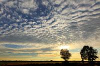 Zur Galerie mit Teilnehmerfotos der Fotoreise Teufelsmoor Landschaftsfotografie