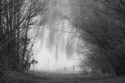 Beispielbild zur Fotoreise Winterlicht - Schwarzweissfotografie