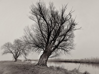 Zur Galerie mit Teilnehmerfotos der Fotoreise Teufelsmoor Schwarzweiss