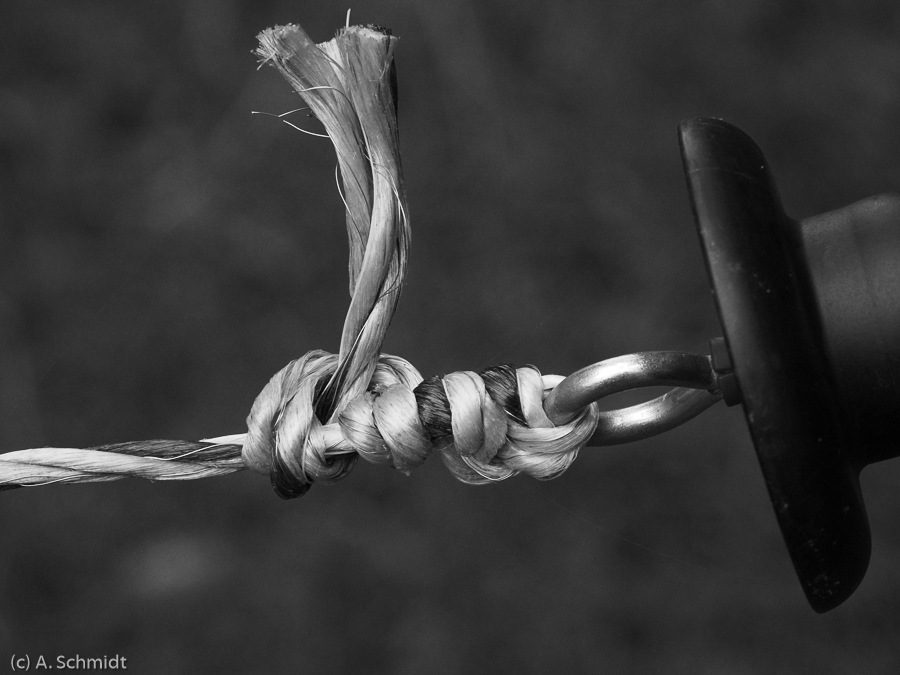 Teilnehmerbild von der Fotoreise Schwarzweissfotografie im Teufelsmoor