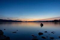 Wasser und Licht am Bodensee